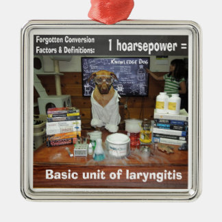 Knowledge Dog Forgotten Conversions Hoarsepower Metal Ornament