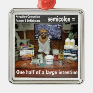 Knowledge Dog Forgotten Conversions Semicolon Metal Ornament