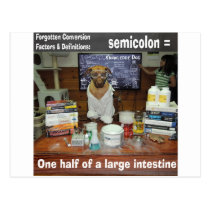 Knowledge Dog Forgotten Conversions Semicolon Postcard