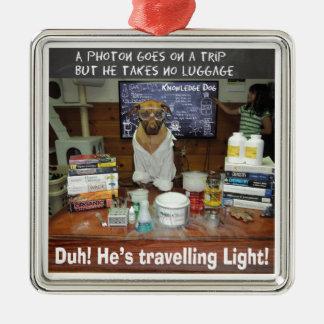 Knowledge Dog Photon Travelling Light Metal Ornament