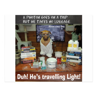 Knowledge Dog Photon Travelling Light Postcard