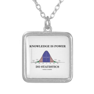 Knowledge Is Power Do Statistics Bell Curve Humor Silver Plated Necklace