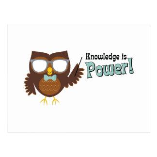 Knowledge Owl Postcard
