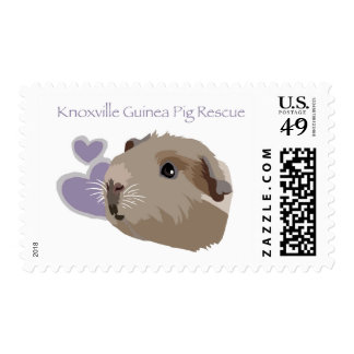Knoxville Guinea Pig Rescue Logo Stamps