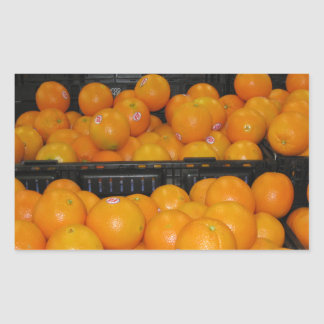 Knoxville zoo 029.JPG-tomato fruit for kitchen ect Rectangular Sticker