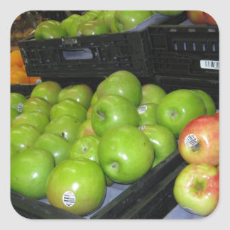 Knoxville zoo 031.JPG-apples fruit for decor Square Sticker