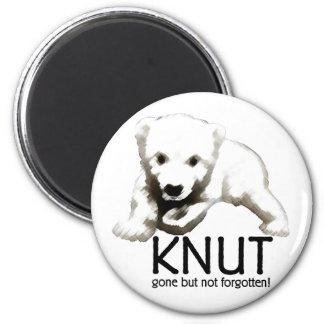 Knut Magnet