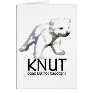 Knut Polar Bear Card