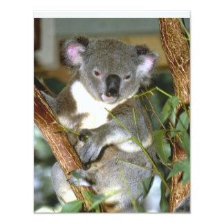 koala2 4.25x5.5 paper invitation card