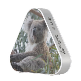 koala-10.jpg altavoz