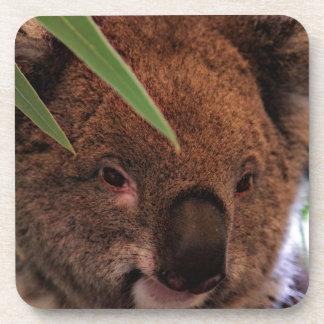Koala 1115P Coaster