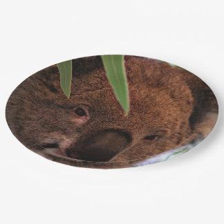 Koala 1115P Plato De Papel De 9 Pulgadas