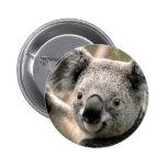 Koala 2 Inch Round Button