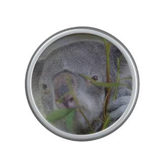 koala-3.jpg altavoz bluetooth