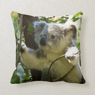 Koala adorable en el amortiguador del tiro del árb cojines