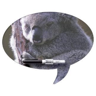 Koala adorable pizarras blancas