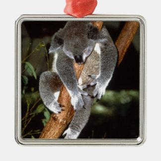 koala adorno navideño cuadrado de metal