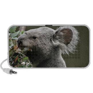 Koala iPhone Altavoces