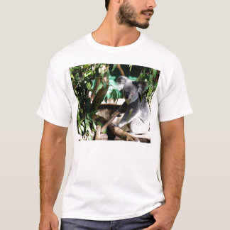 Koala amongst the Gumleaves T-Shirt
