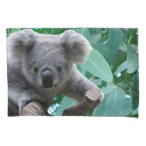 Koala and Eucalyptus Pillow Case