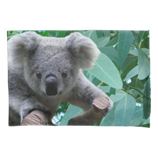 Koala and Eucalyptus Pillow Case