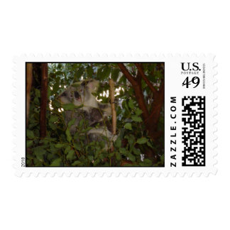 Koala and joey postage