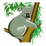 Koala - Australian Tree Living Marsupial Acrylic Cut Out