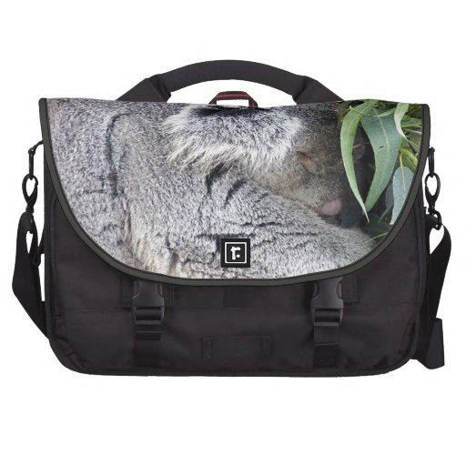 Koala australiana encantadora el dormir bolsas de ordenador