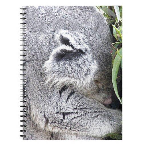 Koala australiana encantadora el dormir libreta espiral