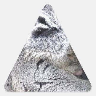 Koala australiana encantadora el dormir pegatinas de triangulo