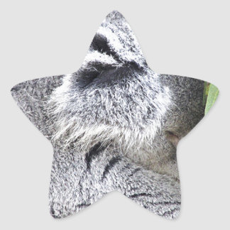 Koala australiana encantadora el dormir calcomanías forma de estrellas