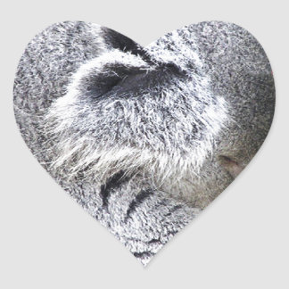 Koala australiana encantadora el dormir pegatina corazon