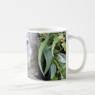 Koala australiana encantadora el dormir tazas de café