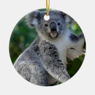 Koala australiana mimosa linda adorno navideño redondo de cerámica