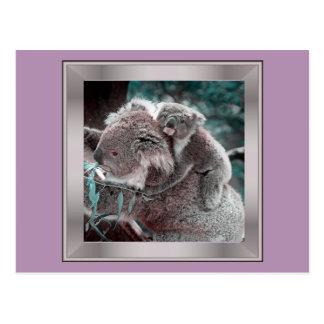 koala baby and mummy postcard