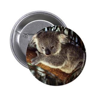 Koala Bear 2 Inch Round Button