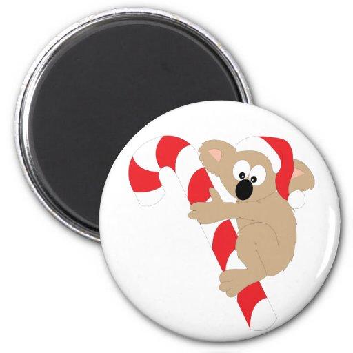 Koala Bear Candy Cane Fridge Magnet