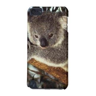Koala Bear iPod Touch 5G Case