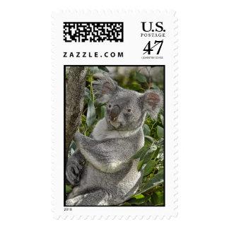 Koala Bear Facing Left Postage