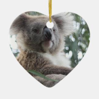 Koala Bear Facts Ornament