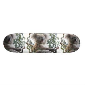 Koala Bear Facts Skateboard