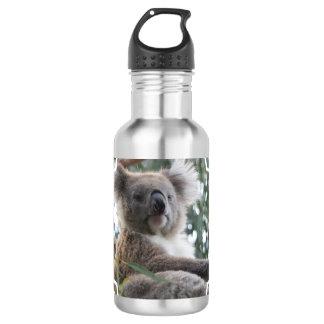 Koala Bear Facts Stainless Steel Water Bottle