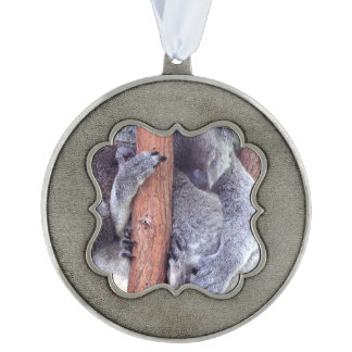 Koala Bear Family Scalloped Ornament
