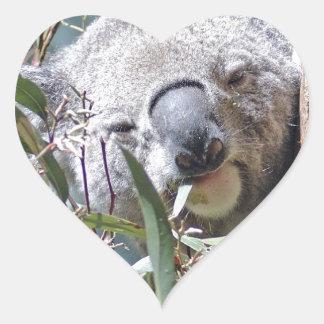 Koala bear heart sticker