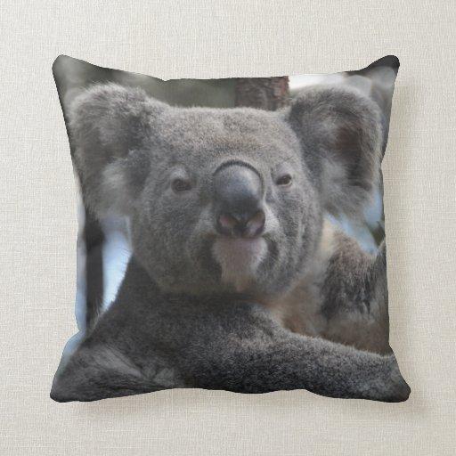 Koala Bear In Tree Pillow Zazzle