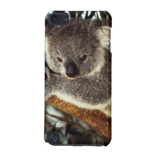 Koala Bear iPod Touch (5th Generation) Case