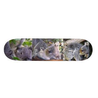 """Koala Bear"""" Let's do this""""_Skateboard Skateboard"""
