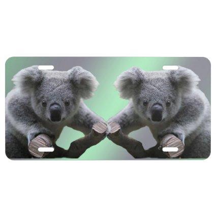 Koala Bear License Plate License Plate