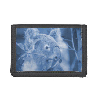koala bear looking right blue marsupial trifold wallets