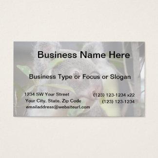 koala bear looking right c business card